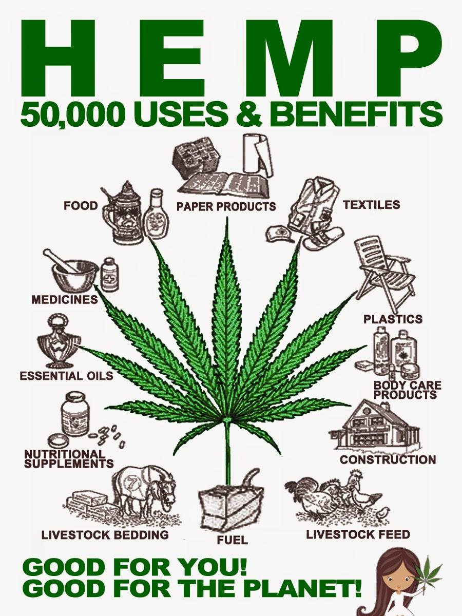 Klik hier voor The Ultimate Hemp Reports