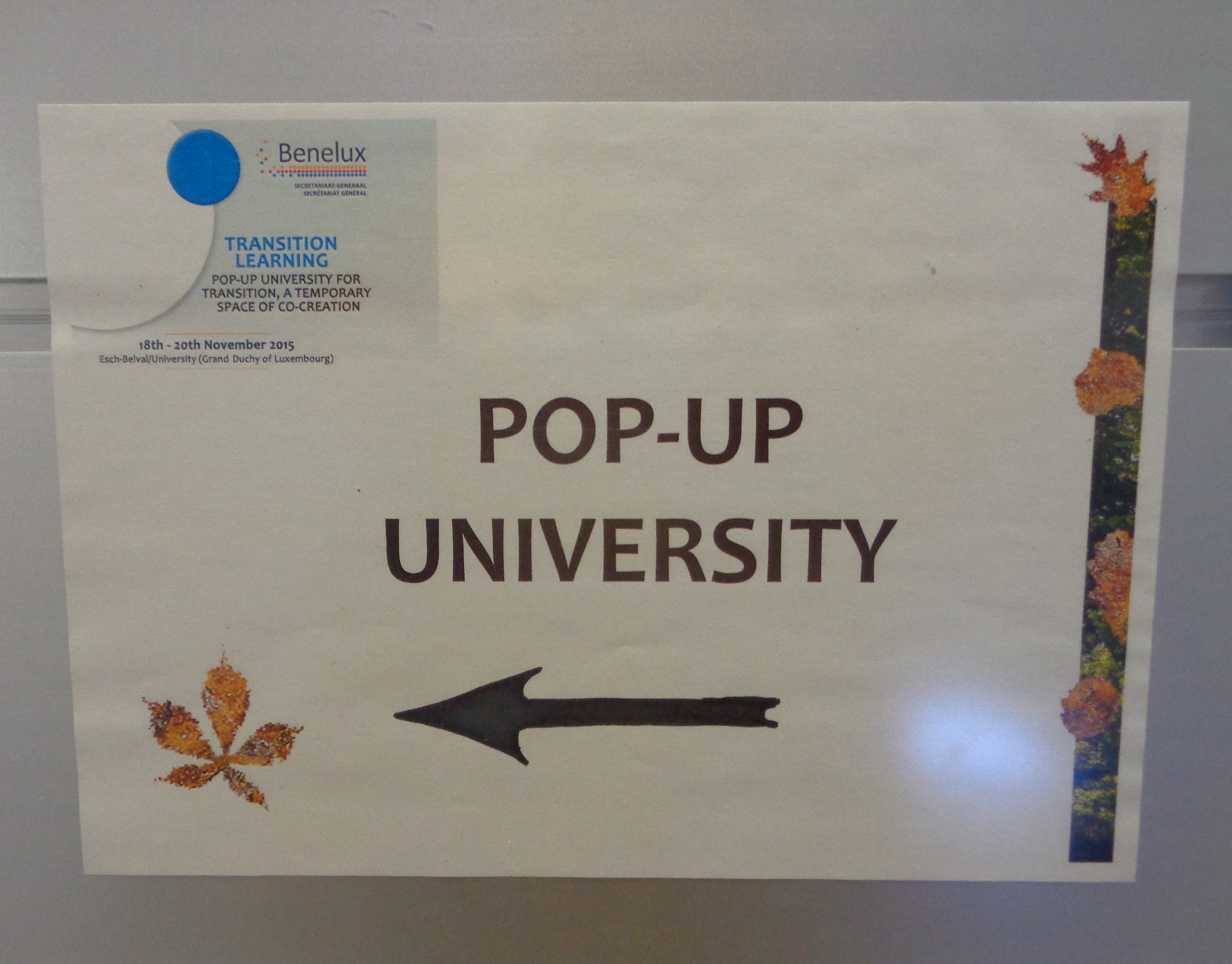 pop up uni